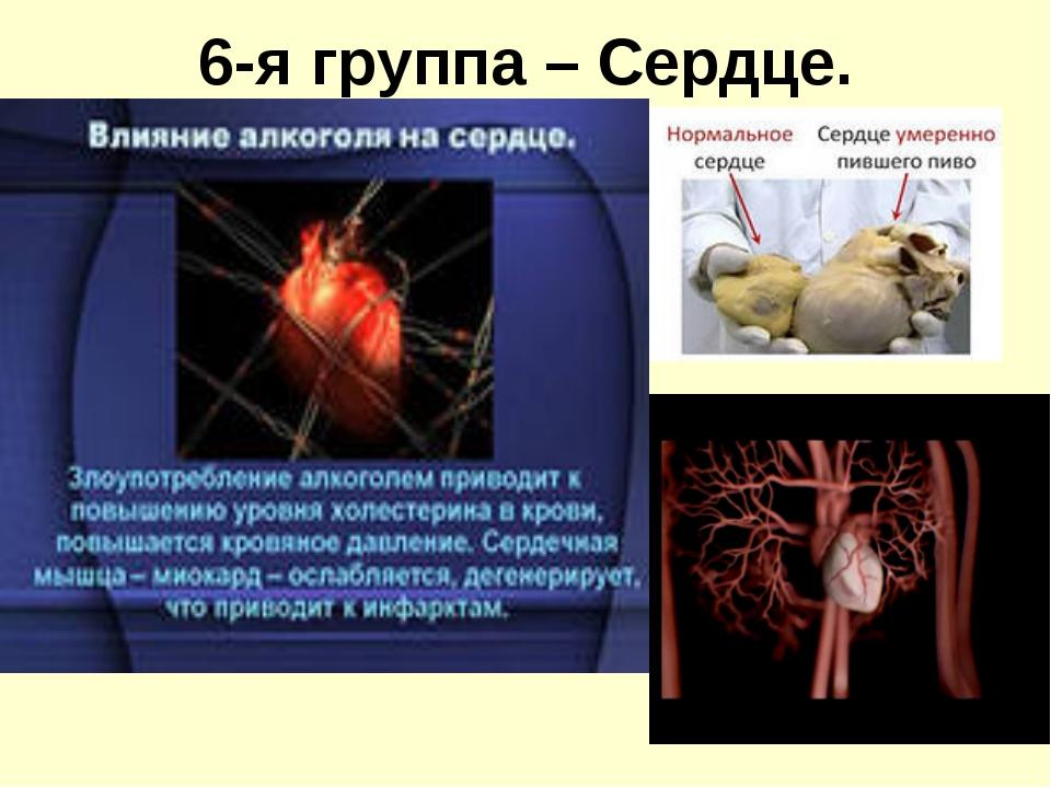 6-я группа – Сердце.