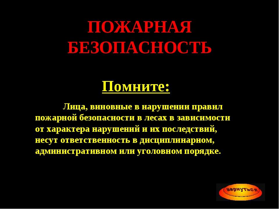ПОЖАРНАЯ БЕЗОПАСНОСТЬ Помните: Лица, виновные в нарушении правил пожарной бе...