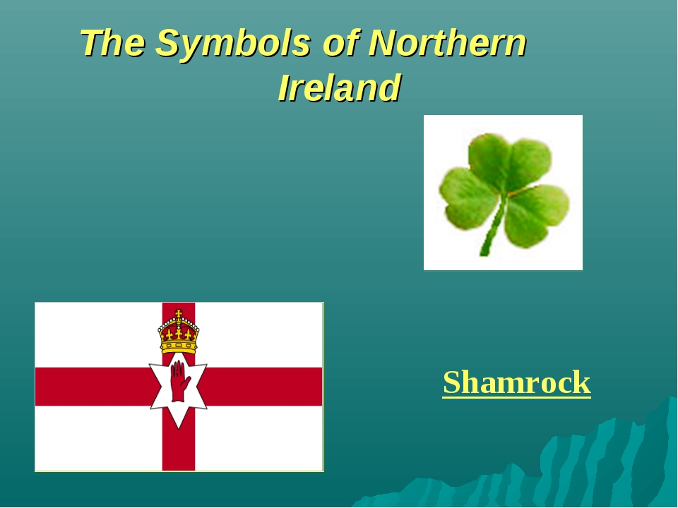 The Symbols of Northern Ireland Shamrock