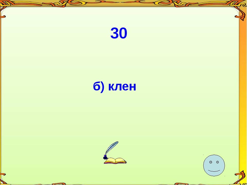 30 б) клен