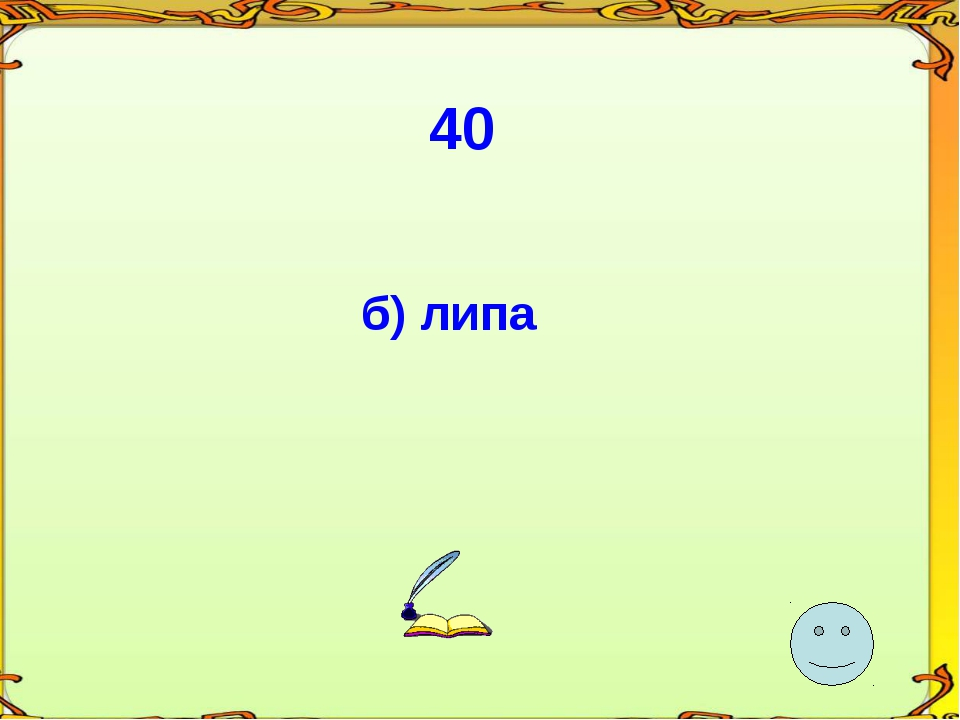 40 б) липа