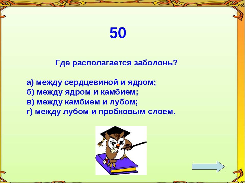 50 Где располагается заболонь? а) между сердцевиной и ядром; б) между ядром и...