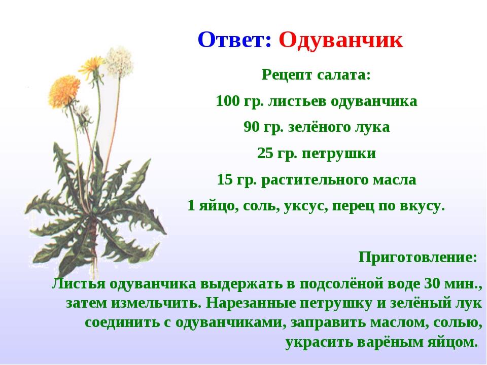 Рецепт салата: 100 гр. листьев одуванчика 90 гр. зелёного лука 25 гр. петрушк...