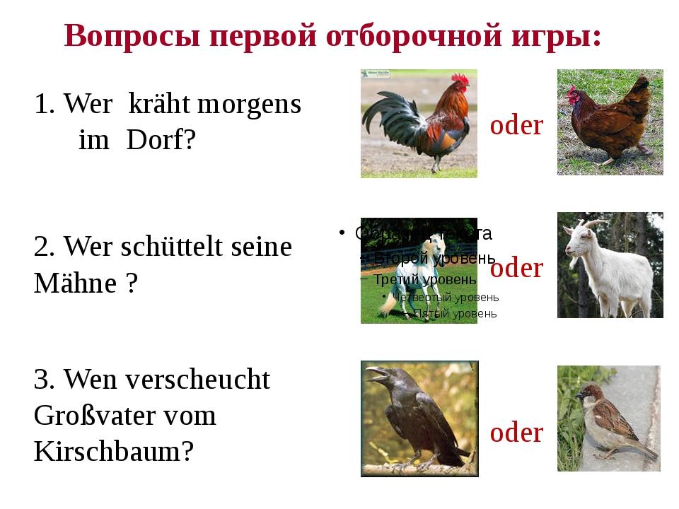 Вопросы первой отборочной игры: 1. Wer kräht morgens im Dorf? oder 2. Wer sch...