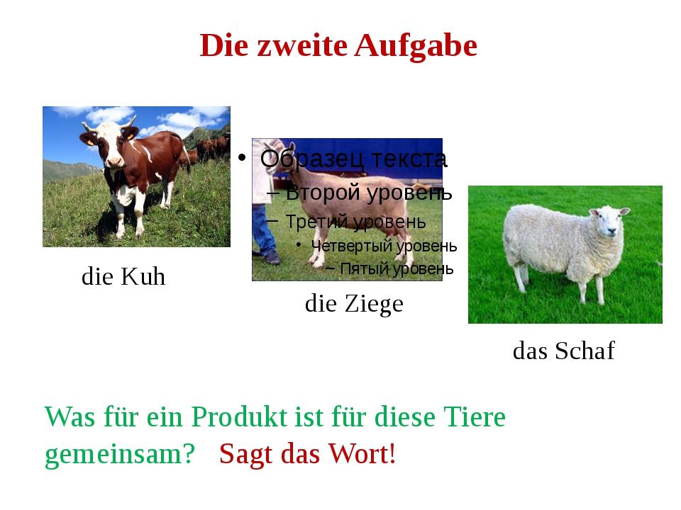 Die zweite Aufgabe die Kuh die Ziege das Schaf Was für ein Produkt ist für di...