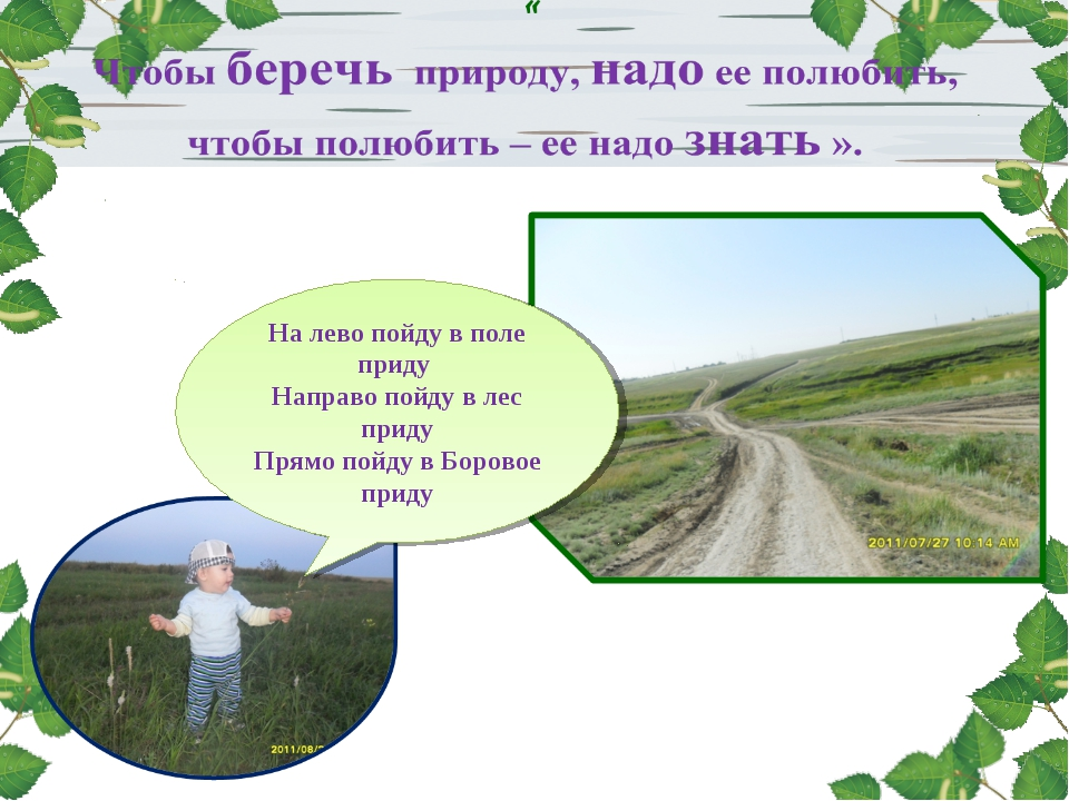 На лево пойду в поле приду Направо пойду в лес приду Прямо пойду в Боровое п...