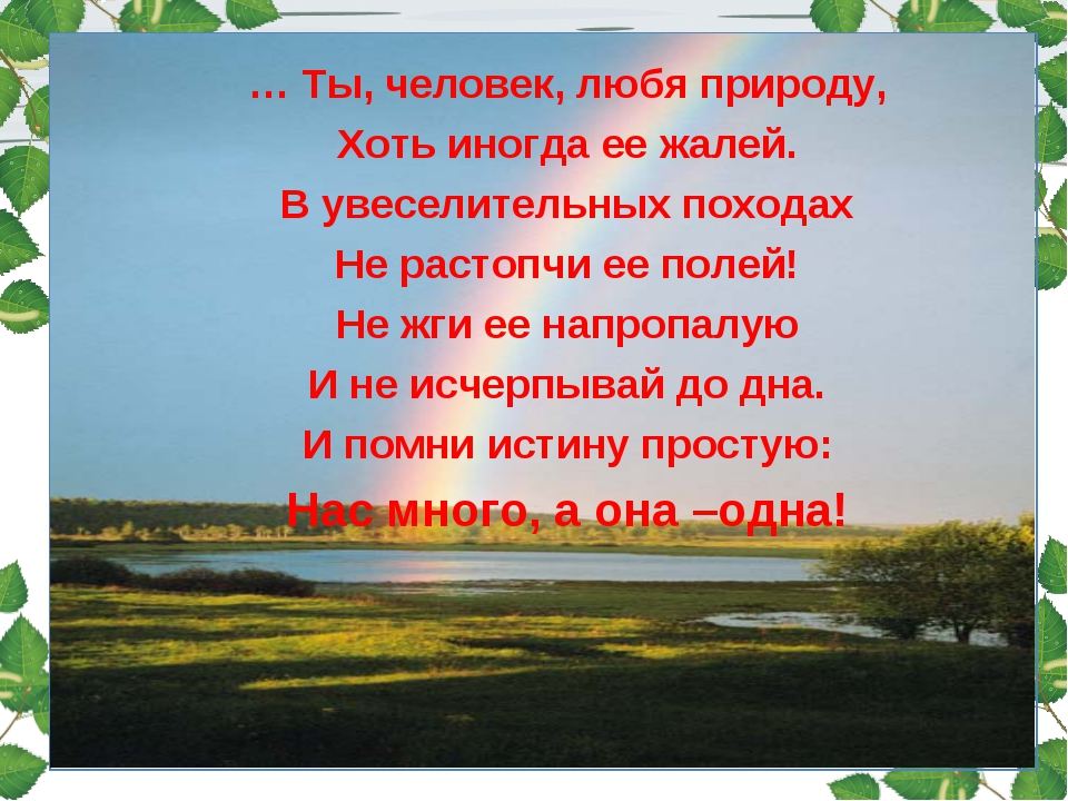 … Ты, человек, любя природу, Хоть иногда ее жалей. В увеселительных походах...