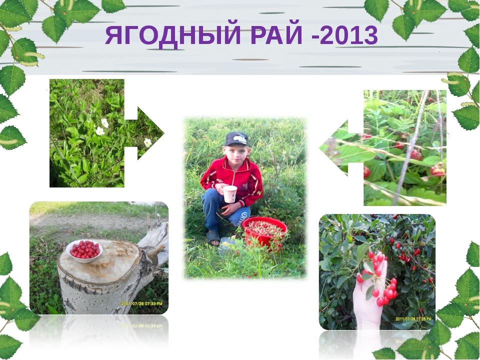 ЯГОДНЫЙ РАЙ -2013