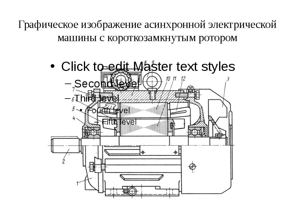Графическое изображение асинхронной электрической машины с короткозамкнутым р...