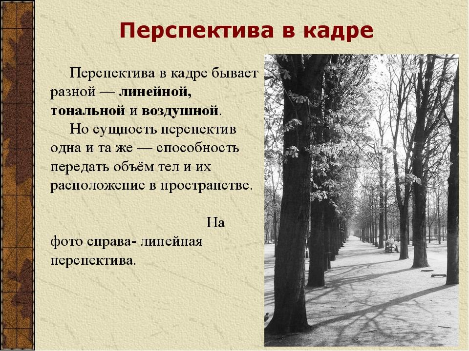 Перспектива в кадре Перспектива в кадре бывает разной — линейной, тональной...