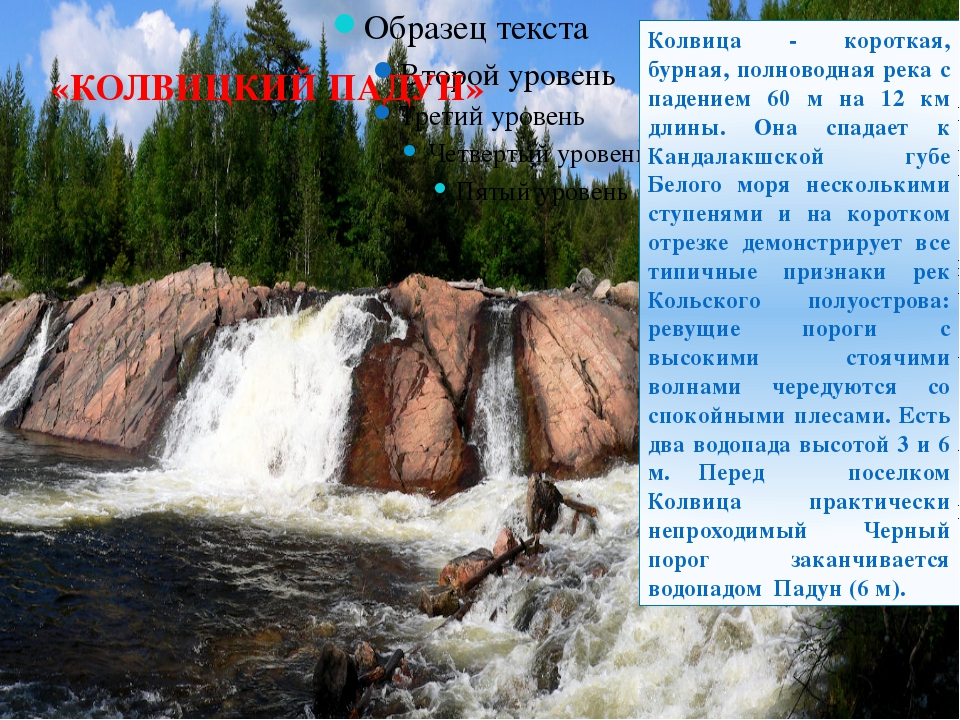«КОЛВИЦКИЙ ПАДУН» Колвица - короткая, бурная, полноводная река с падением 60...