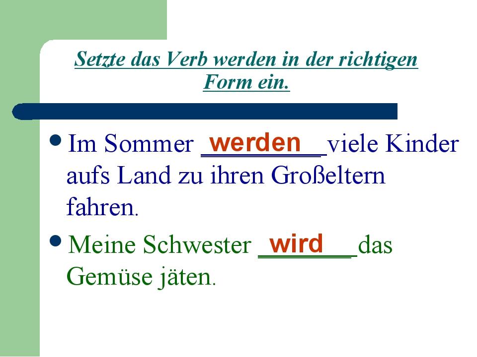 Setzte das Verb werden in der richtigen Form ein. Im Sommer _________ viele K...