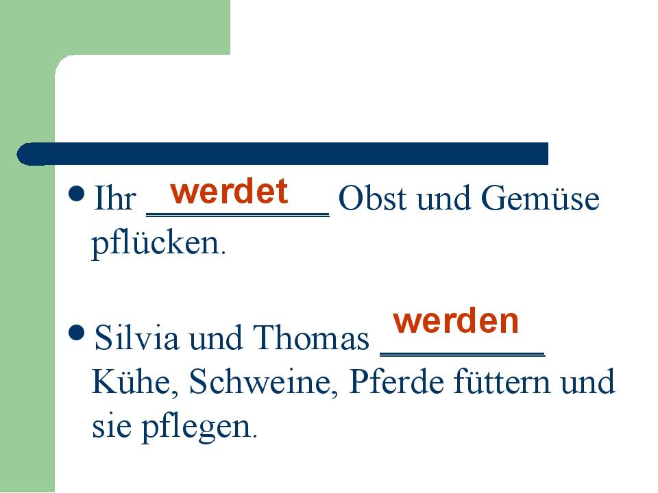 Ihr __________ Obst und Gemüse pflücken. werdet Silvia und Thomas _________ K...