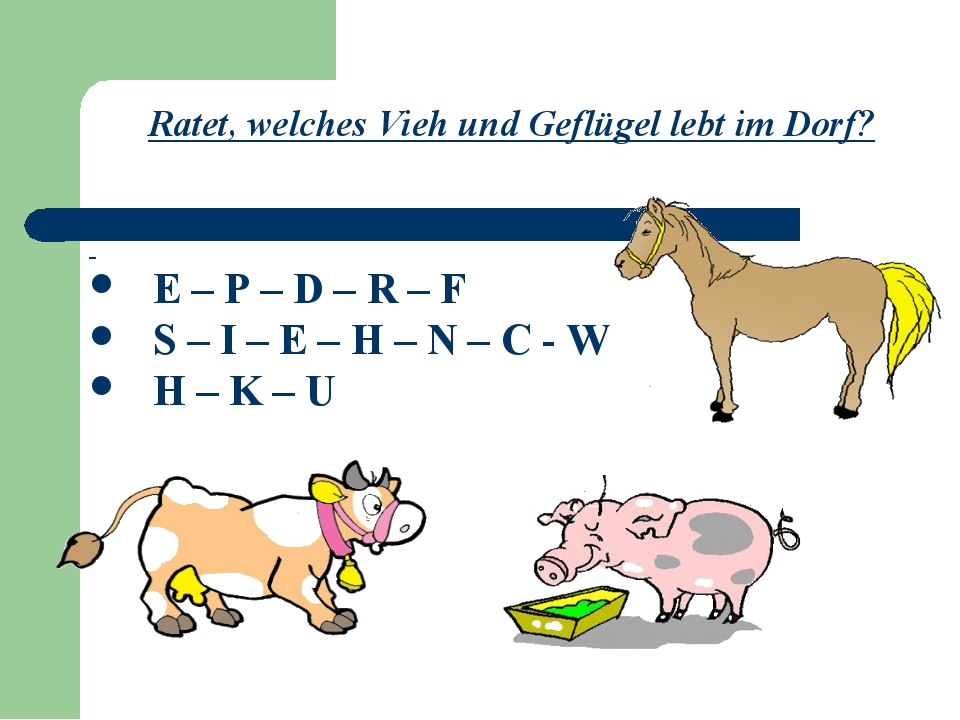 Ratet, welches Vieh und Geflügel lebt im Dorf? E – P – D – R – F S – I – E –...