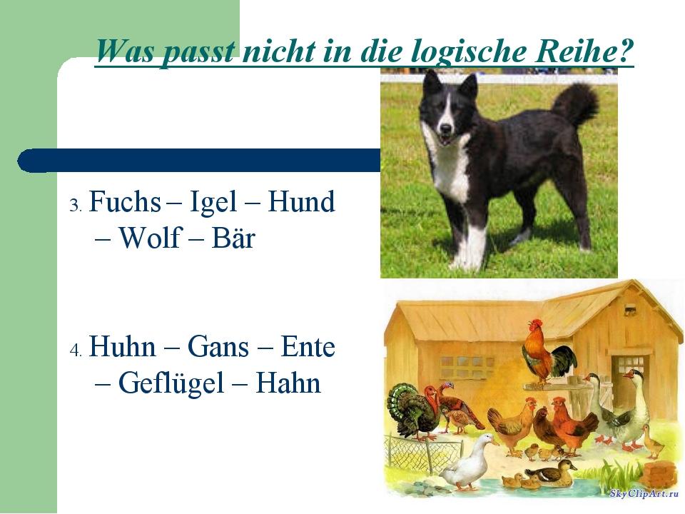 Was passt nicht in die logische Reihe? 3. Fuchs – Igel – Hund – Wolf – Bär 4....