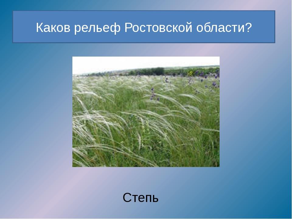 Каков рельеф Ростовской области? Степь