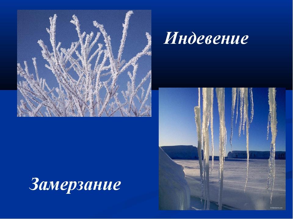 Индевение Замерзание