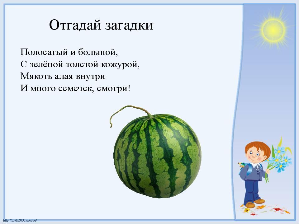 Отгадай загадки Полосатый и большой, С зелёной толстой кожурой, Мякоть алая в...