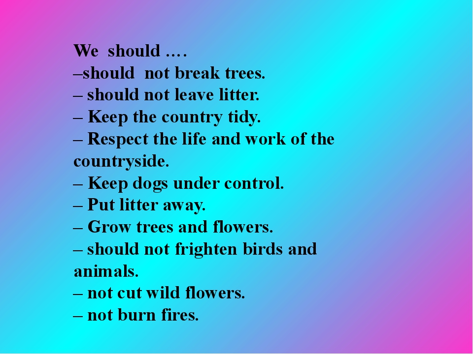 We should …. –should not break trees. – should not leave litter. – Keep the...