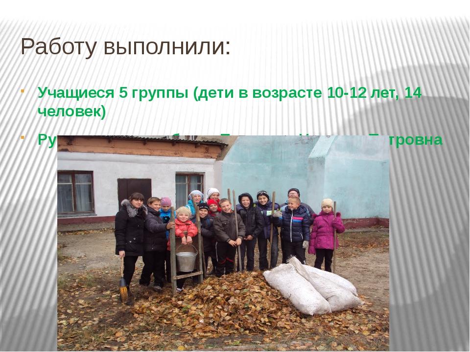 Работу выполнили: Учащиеся 5 группы (дети в возрасте 10-12 лет, 14 человек) Р...