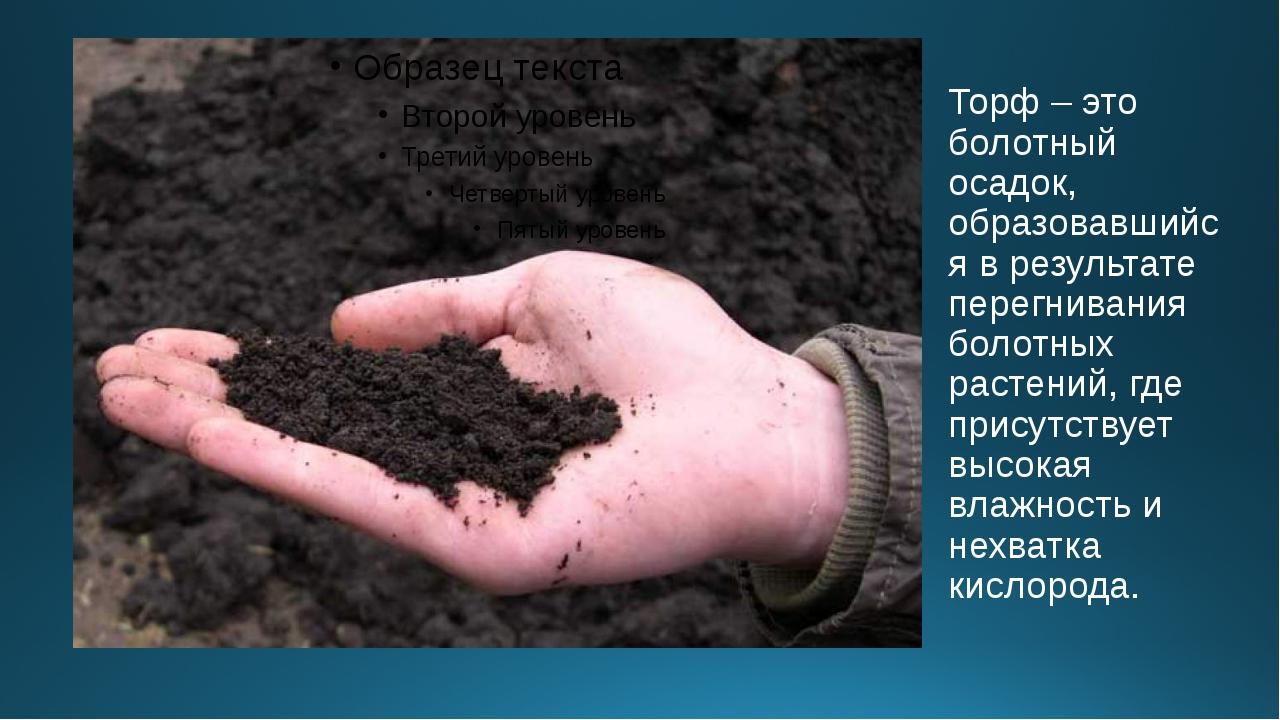 Торф – это болотный осадок, образовавшийся в результате перегнивания болотных...