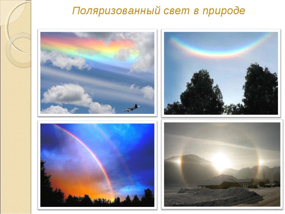Поляризованный свет в природе *