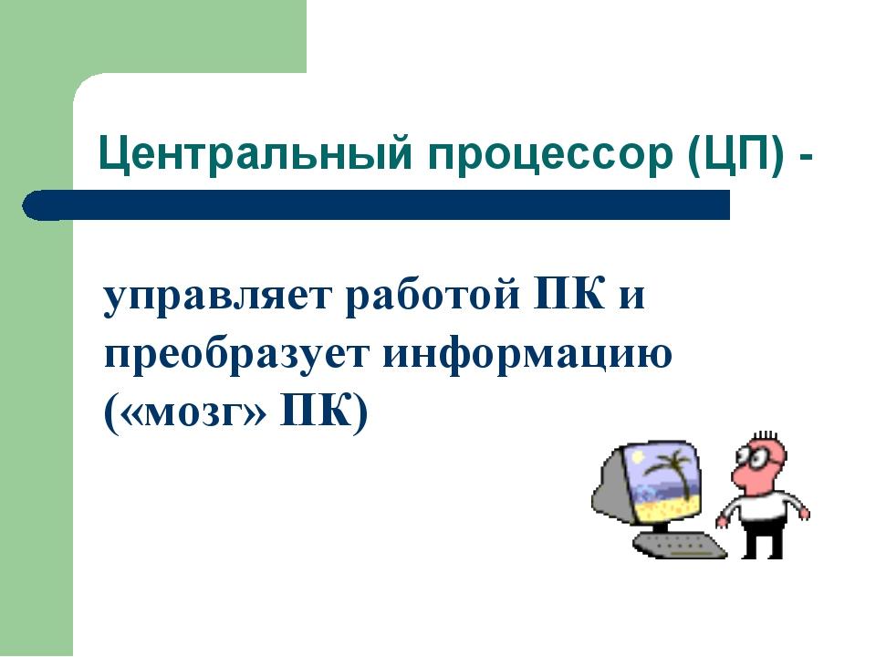Центральный процессор (ЦП) - управляет работой ПК и преобразует информацию («...