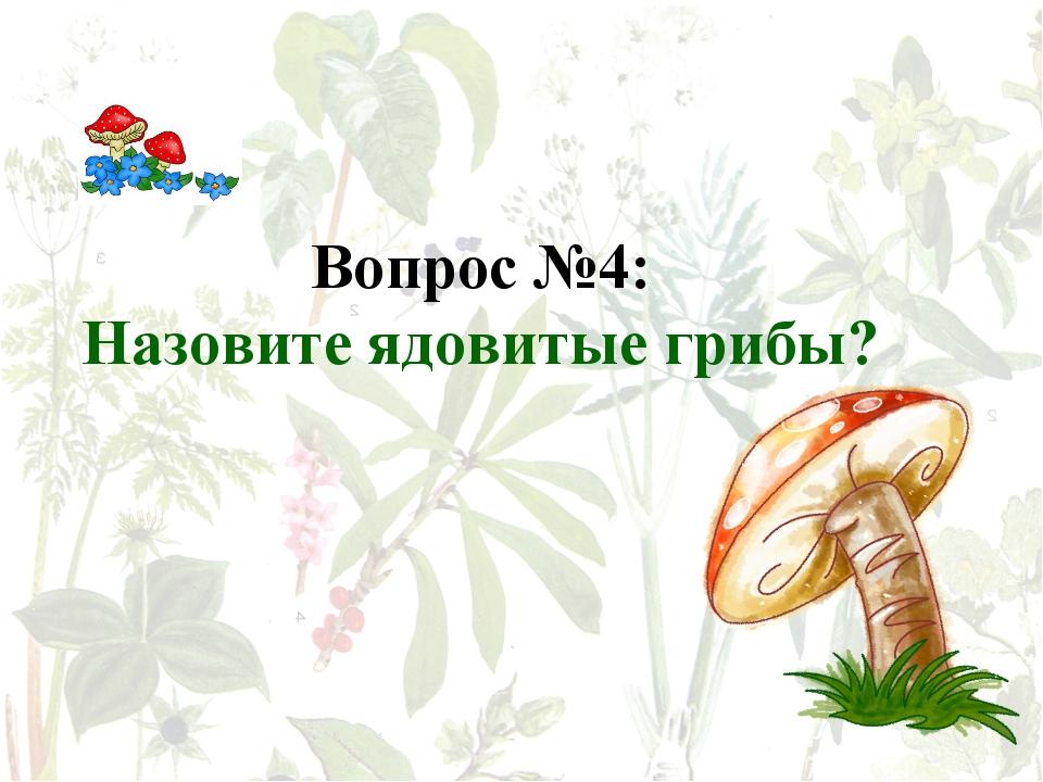 Вопрос №4: Назовите ядовитые грибы?