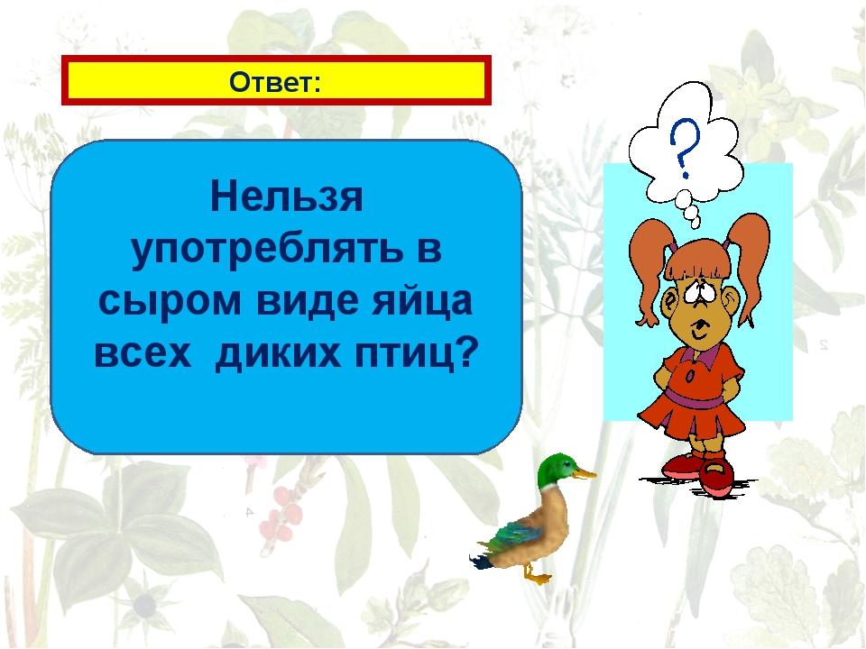 Ответ: Нельзя употреблять в сыром виде яйца всех диких птиц?