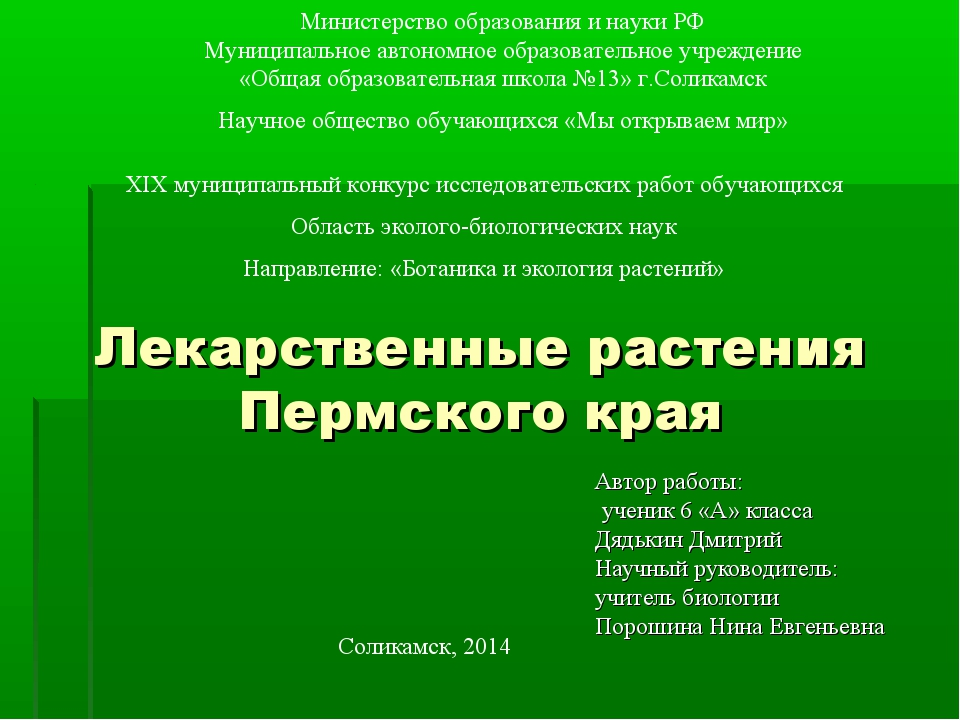 Лекарственные растения Пермского края Автор работы: ученик 6 «А» класса Дядьк...