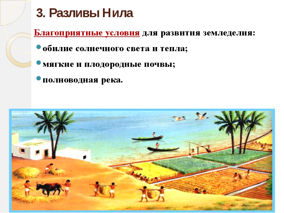3. Разливы Нила Благоприятные условия для развития земледелия: обилие солнечн...