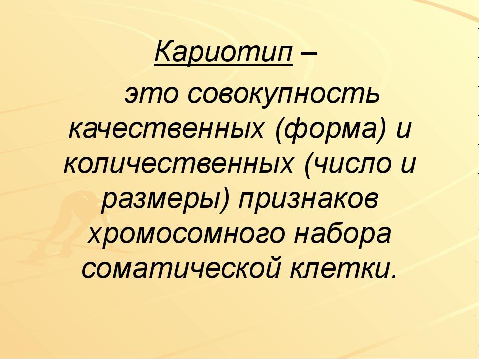 Кариотип – это совокупность качественных (форма) и количественных (число и ра...