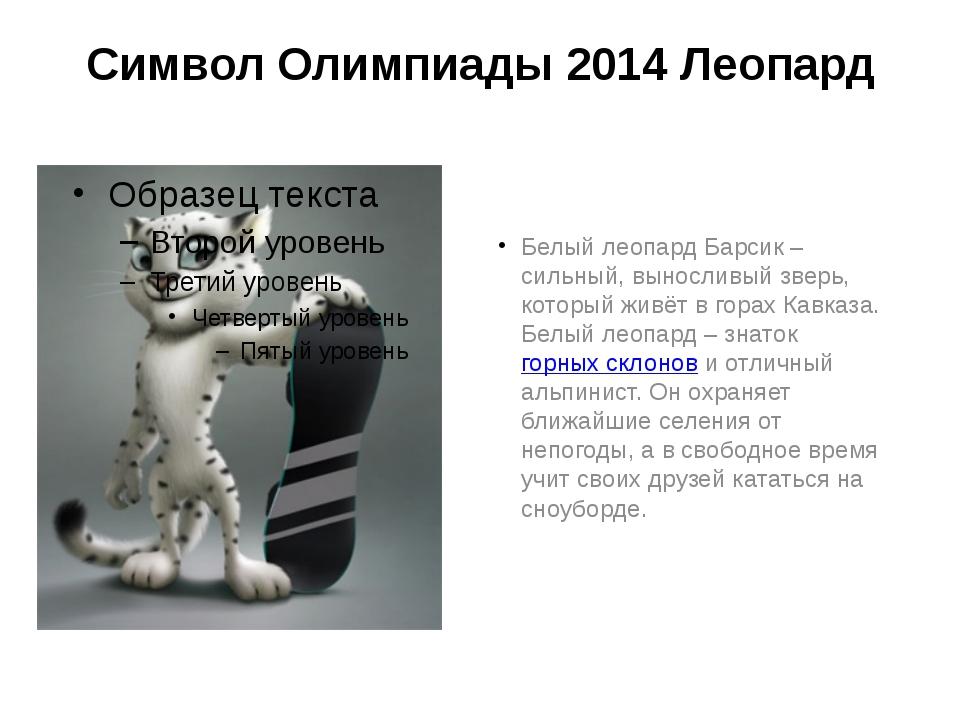 Символ Олимпиады 2014 Леопард Белый леопард Барсик – сильный, выносливый звер...