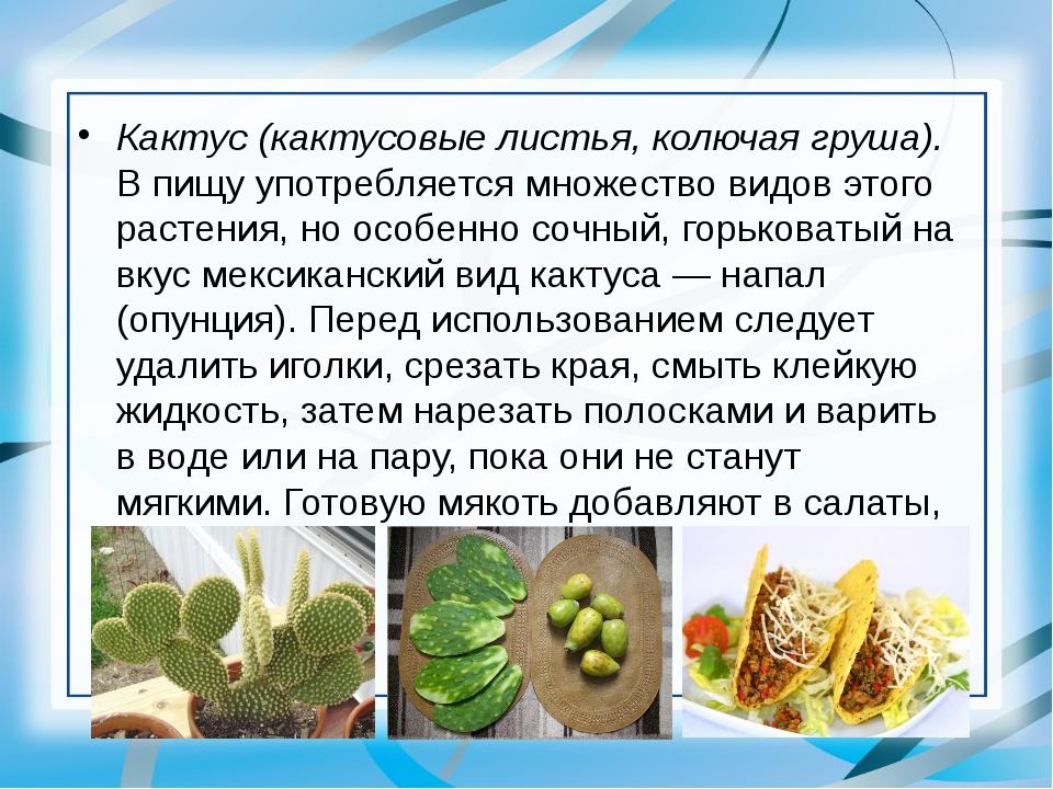 Кактус (кактусовые листья, колючая груша). В пищу употребляется множество вид...