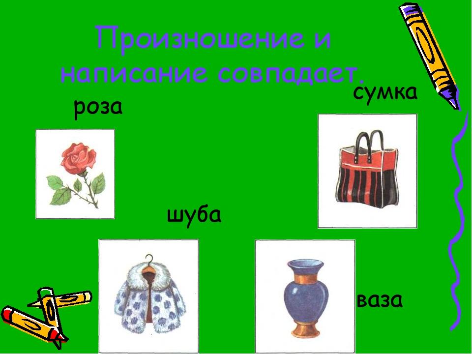 Произношение и написание совпадает. роза сумка шуба ваза