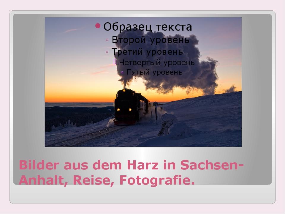 Bilder aus dem Harz in Sachsen-Anhalt, Reise, Fotografie.