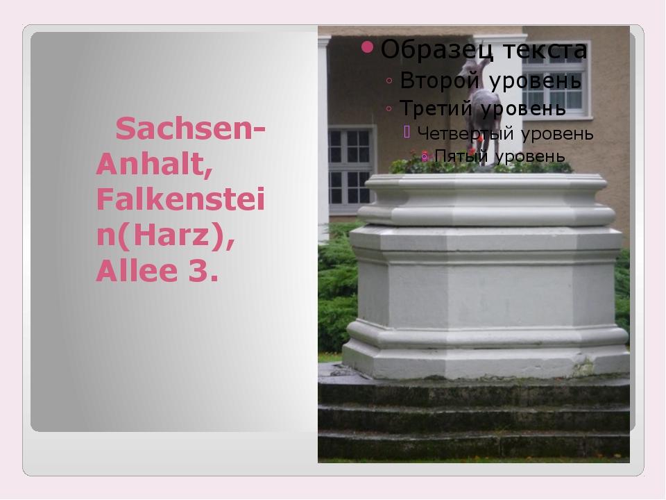 Sachsen-Anhalt, Falkenstein(Harz), Allee 3.