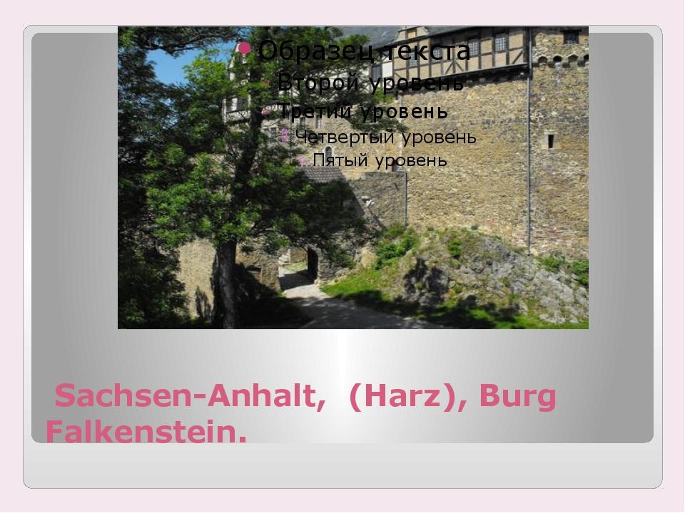 Sachsen-Anhalt, (Harz), Burg Falkenstein.