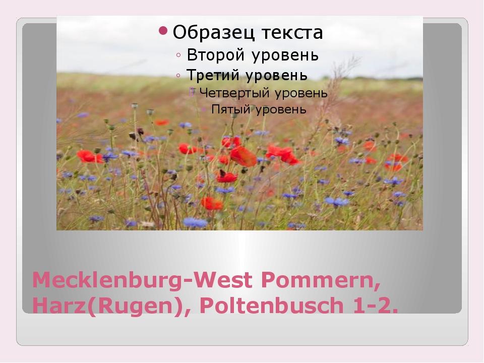 Mecklenburg-West Pommern, Harz(Rugen), Poltenbusch 1-2.