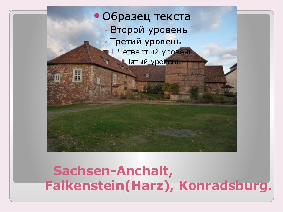 Sachsen-Anchalt, Falkenstein(Harz), Konradsburg.