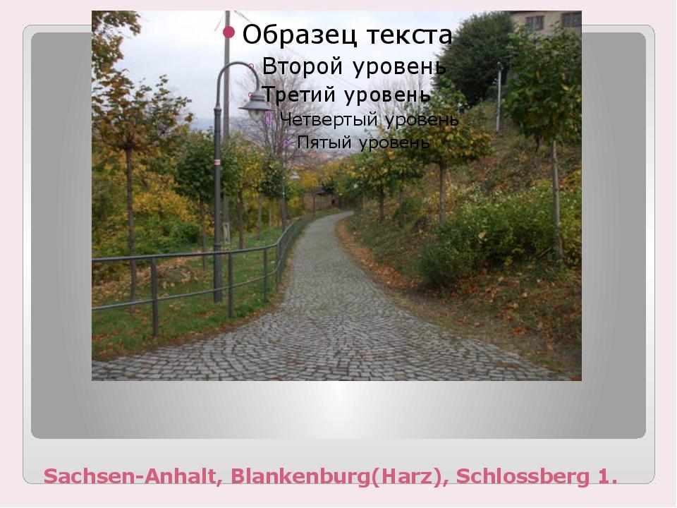 Sachsen-Anhalt, Blankenburg(Harz), Schlossberg 1.