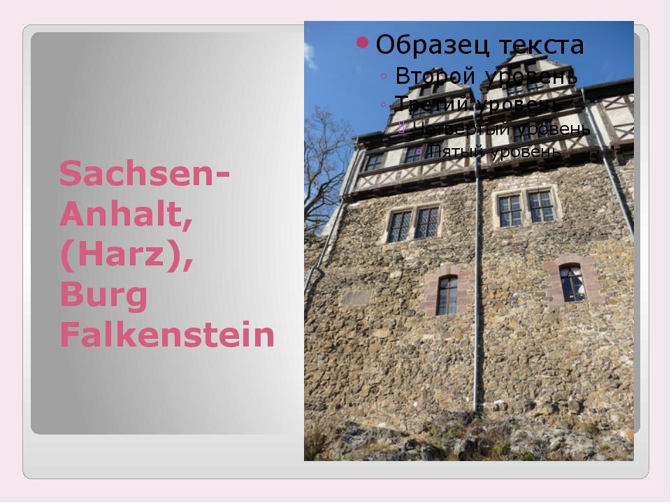 Sachsen-Anhalt, (Harz), Burg Falkenstein