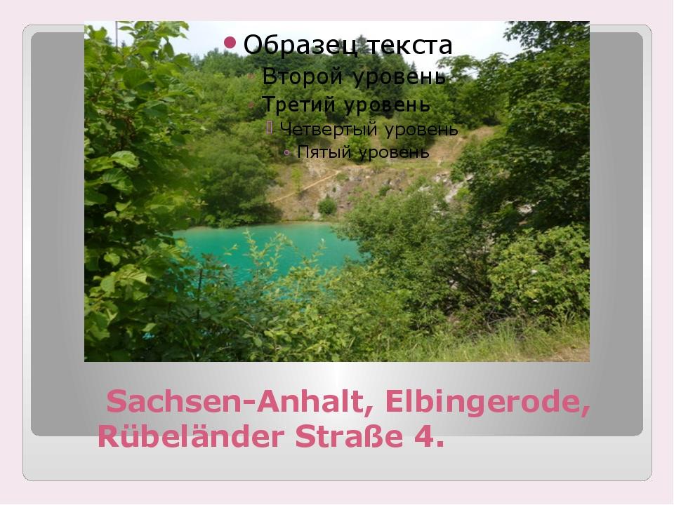 Sachsen-Anhalt, Elbingerode, Rübeländer Straße 4.