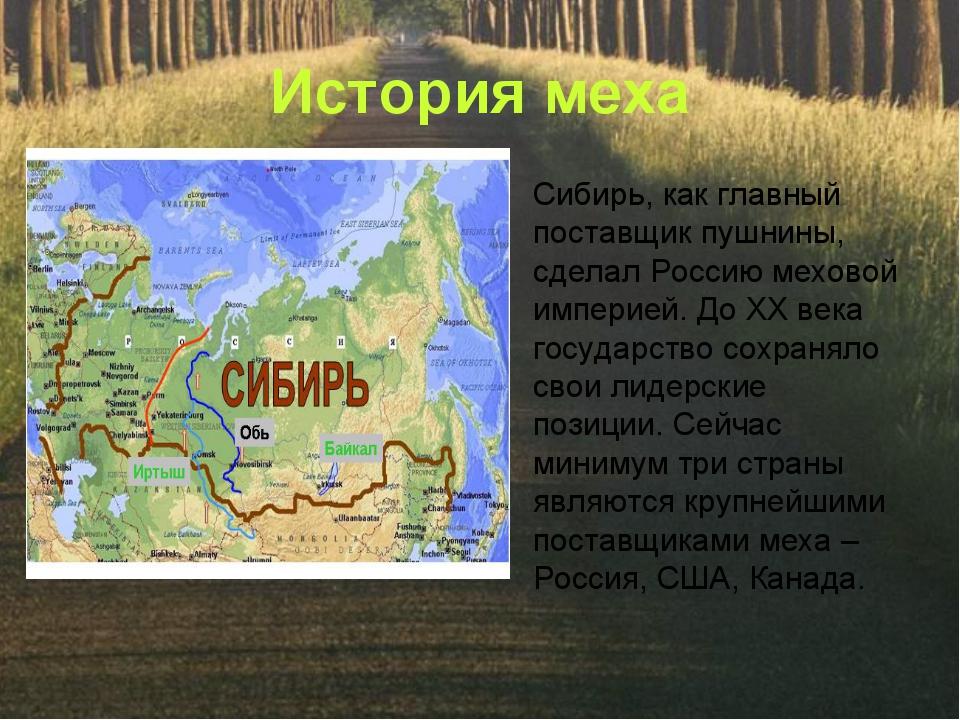 История меха Сибирь, как главный поставщик пушнины, сделал Россию меховой имп...