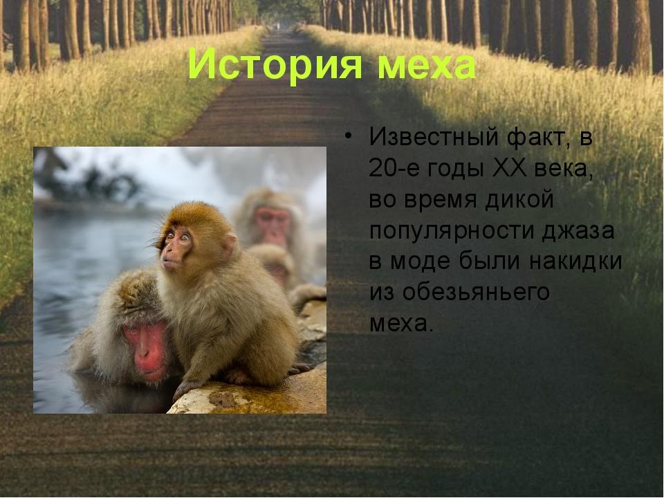 История меха Известный факт, в 20-е годы ХХ века, во время дикой популярности...