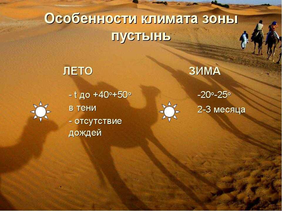 Особенности климата зоны пустынь ЛЕТОЗИМА - t до +40о+50о в тени - отсутст...