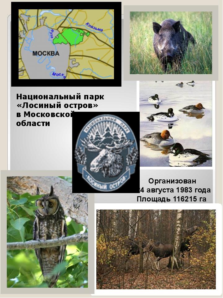 Национальный парк «Лосиный остров» в Московской области Организован 24 август...