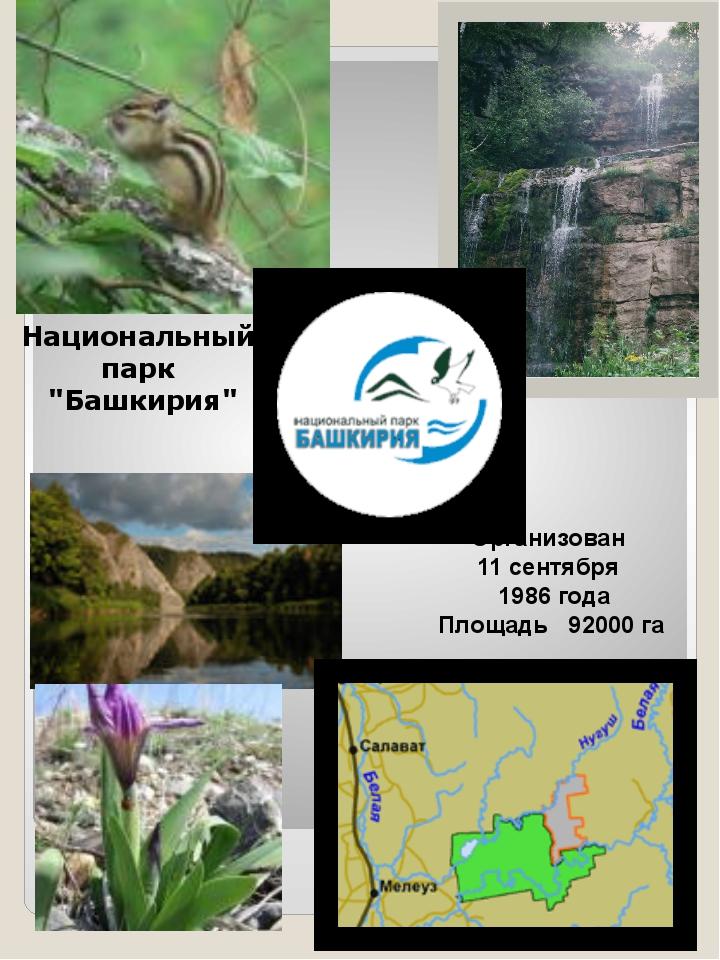 """Национальный парк """"Башкирия"""" Организован 11 сентября 1986 года Площадь 92000 га"""