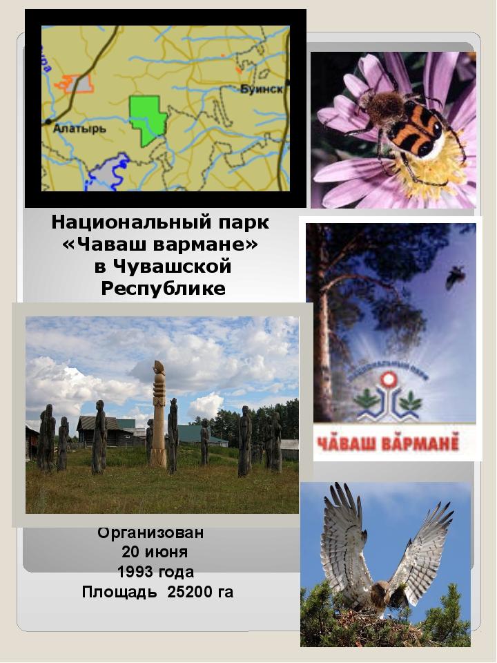 Организован 20 июня 1993 года Площадь 25200 га Национальный парк «Чаваш варма...