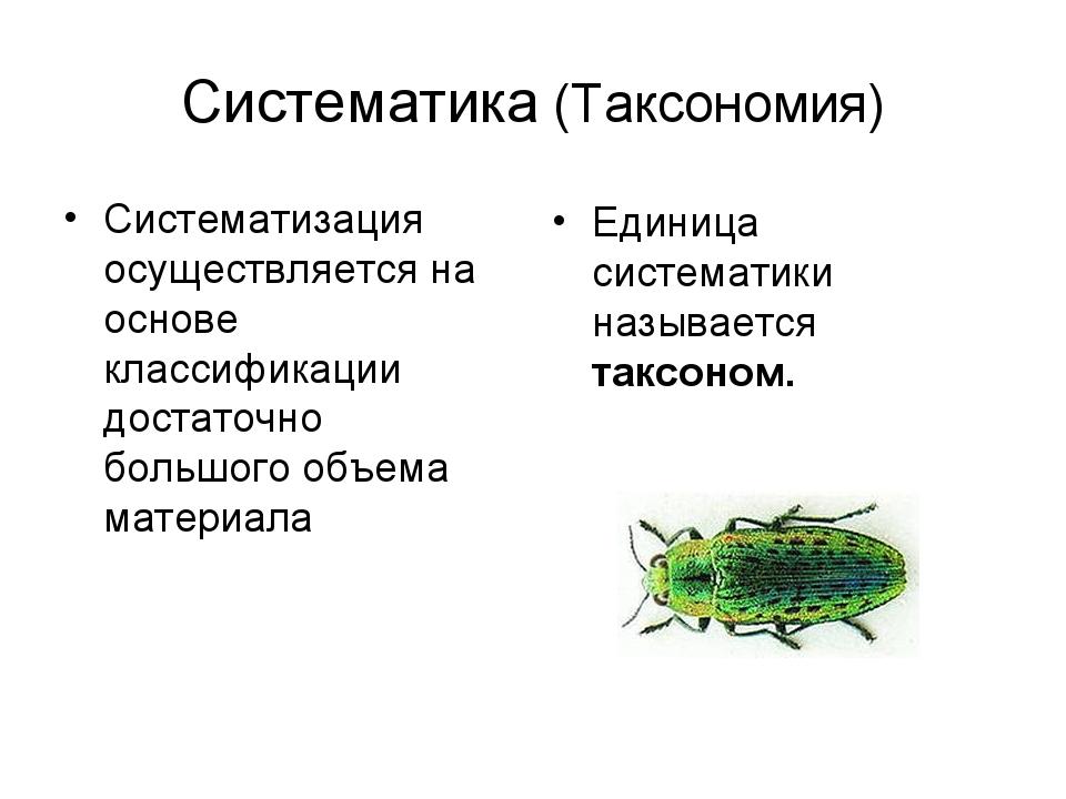 Систематика (Таксономия) Систематизация осуществляется на основе классификаци...